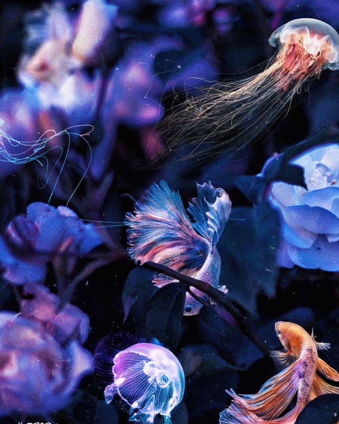 Medusas y Peces entre flores