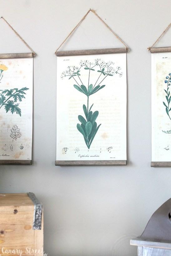 Easy DIY botanical print wall hanging using free botanical printables. https://canarystreetcrafts.com/