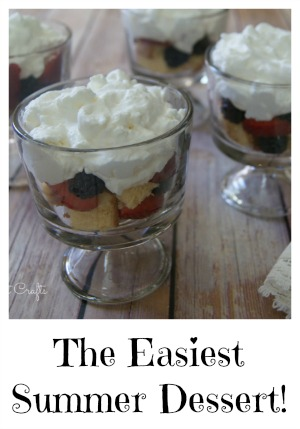The easiest summer dessert!  -canarystreetcrafts.com