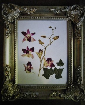 AA&V many flowers