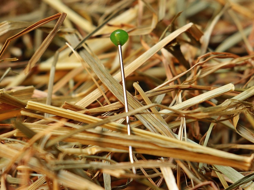 needle-in-a-haystack-1752846_1280.jpg