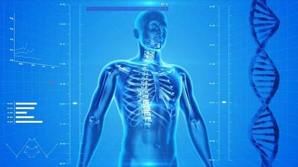 發現新器官「間質」是癌細胞擴散腫瘤轉移關鍵
