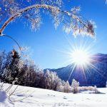 Le Quatre-Saisons - hiver