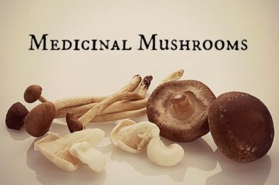 Medicinal Mushrooms Cancer Healing With Alternative