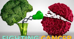 Cancer Fighting and Prevention Foods and Tips