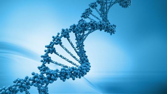 Brca2 Pancreatic Cancer Prognosis, Survival Rate, Treatment