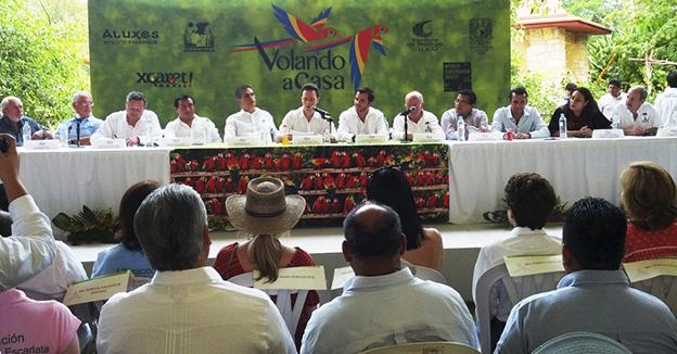 Liberacion Guacamayas