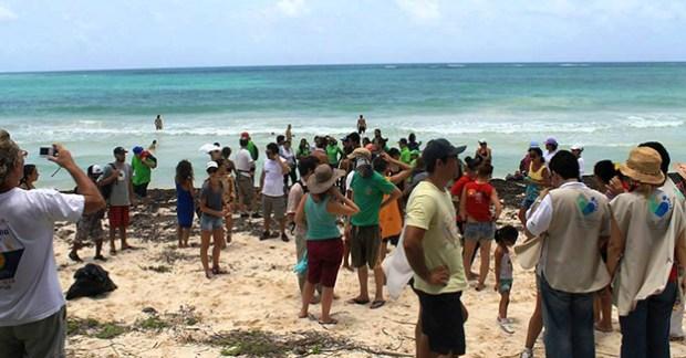 Limpieza de Playas Sian Ka´an