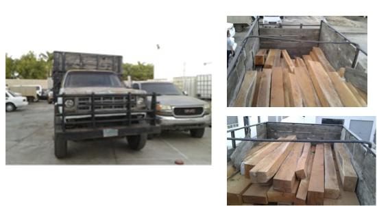 profepa madera