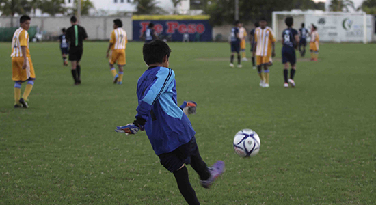 torneo liga fútbol