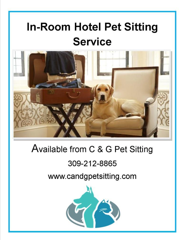 in room pet sitting