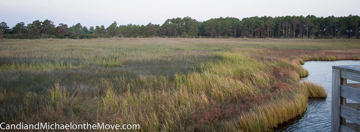 The stunning marsh grasses that surround the Bodie lighthouse. This was taken shortly after sunrise.