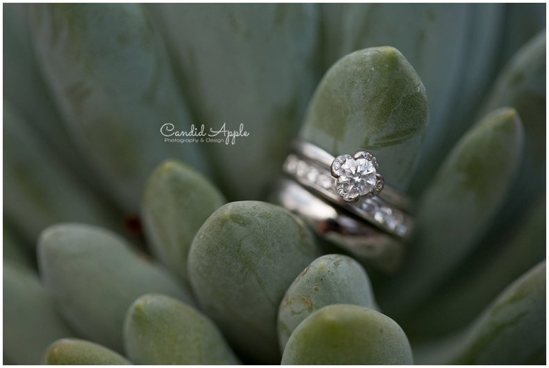Sanctuary_Garden_West_Kelowna_Candid_Apple_Wedding_Photography_0106
