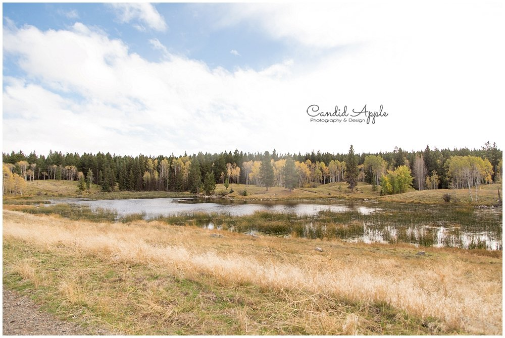 Seven Half Diamond Ranch | Merritt Wedding Venue