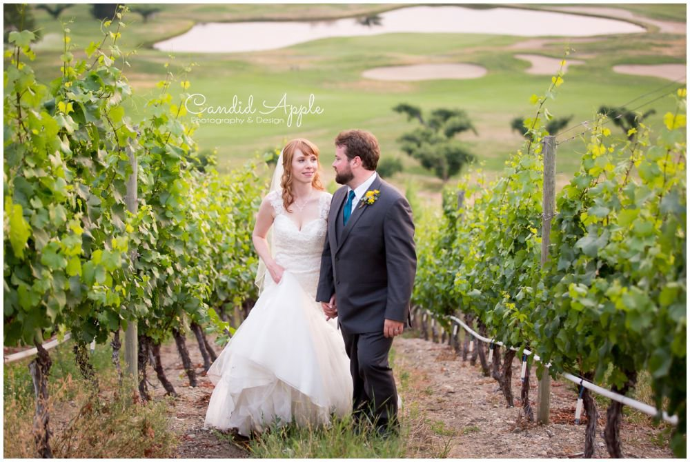 Bride and Groom walking in a vinyard holding hands