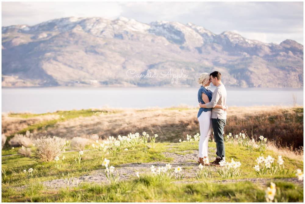 A couple standing on a lookout field of daffodils