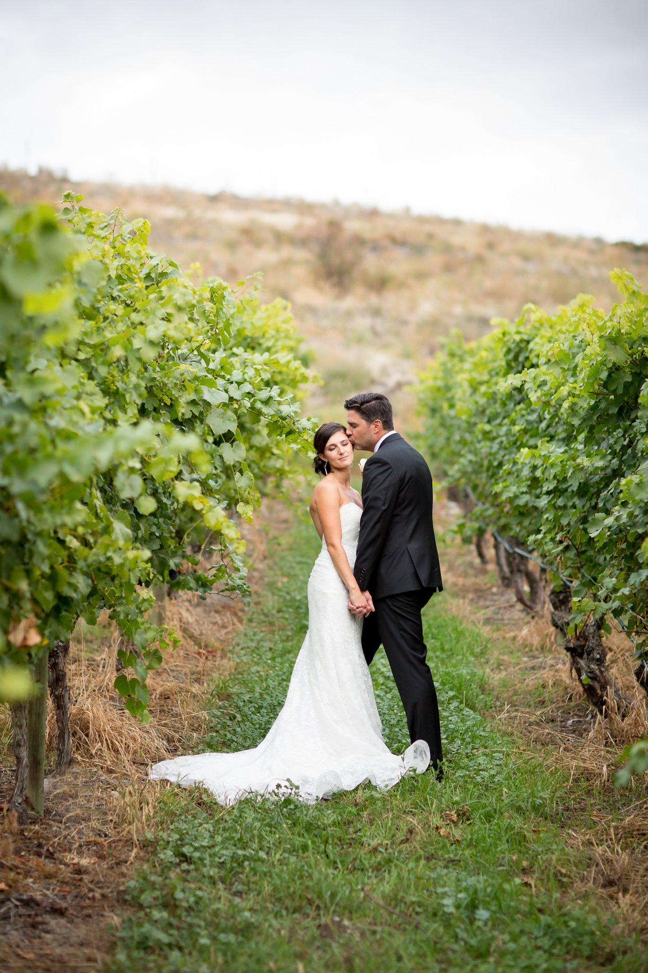 A groom kissing his bride on the cheep in a vineyard