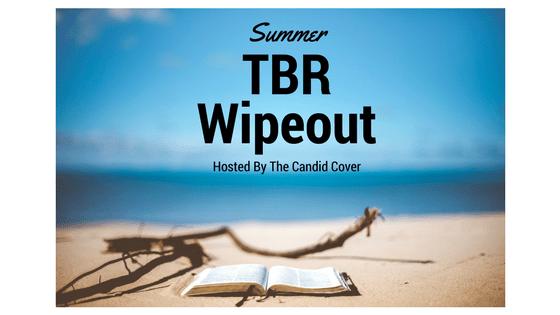 Summer TBR Wipeout Banner