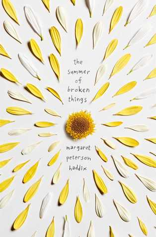 Review: The Summer of Broken Things by Margaret Peterson Haddix