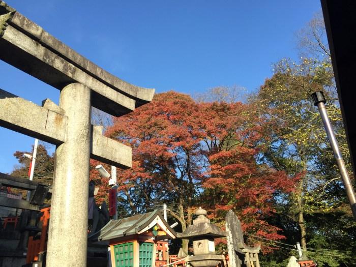 Fushimi Inari Shrine Kyoto 5
