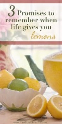 3 promises to remember when life gives you lemons