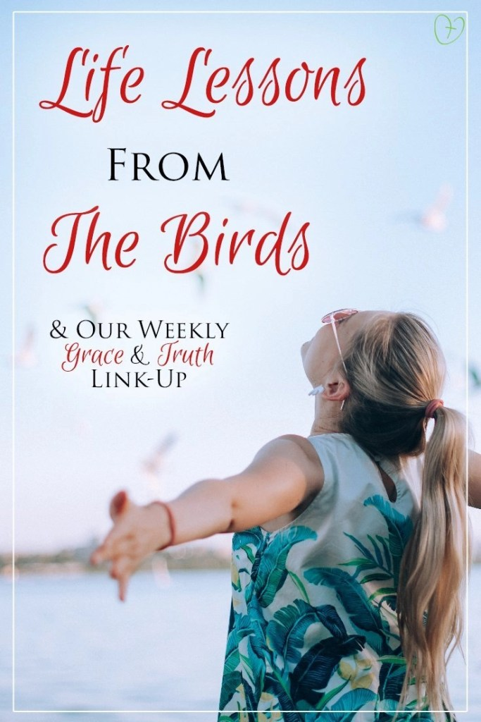 Life lessons from the birds & our grace and truth weekly link-up