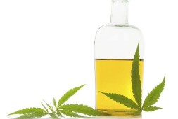 6-benefits-of-using-cbd-oils