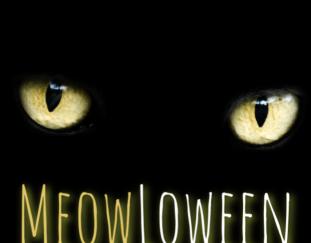 october-meowloween-giveaway-hop