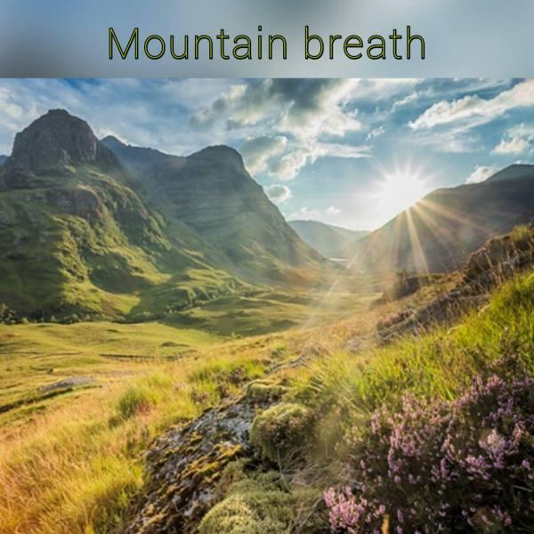 κερί σόγιας mountain breath