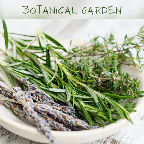 Κερί σόγιας botanical garden