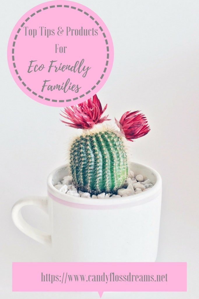 Top Tips and Products for Eco Friendly Families #green #greenliving #eco #ecofriendly #reusables #moneysaving #reducewaste #greenerliving #ecolivingfamily #ecofamily