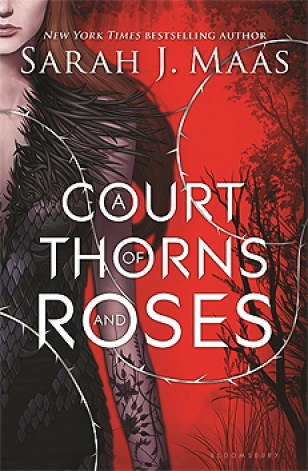 Court of thorns and roses, books I've loved reading