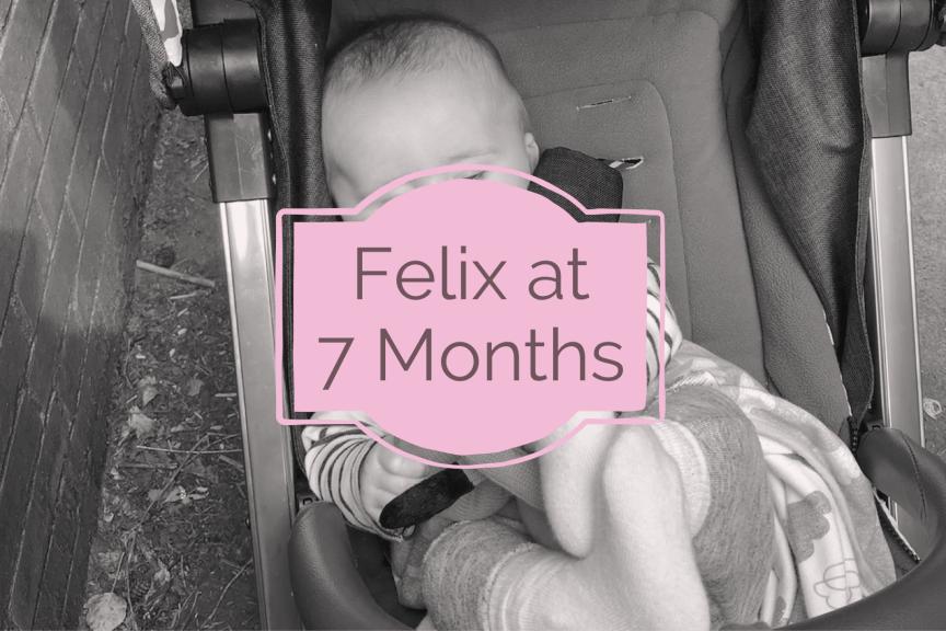 Felix at Seven Months Old