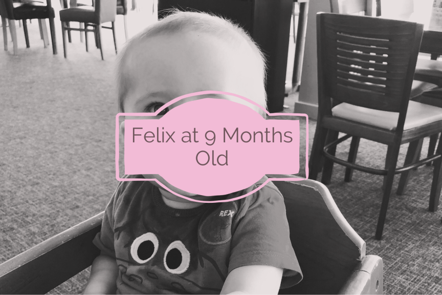 blog post about felix being 9 months old