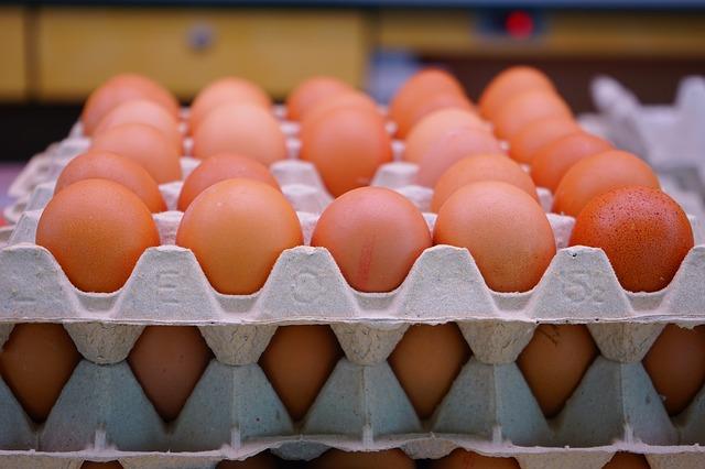 Short Story – Eggs