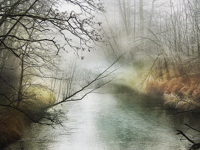 Frozen Ground, Fog – Haiku