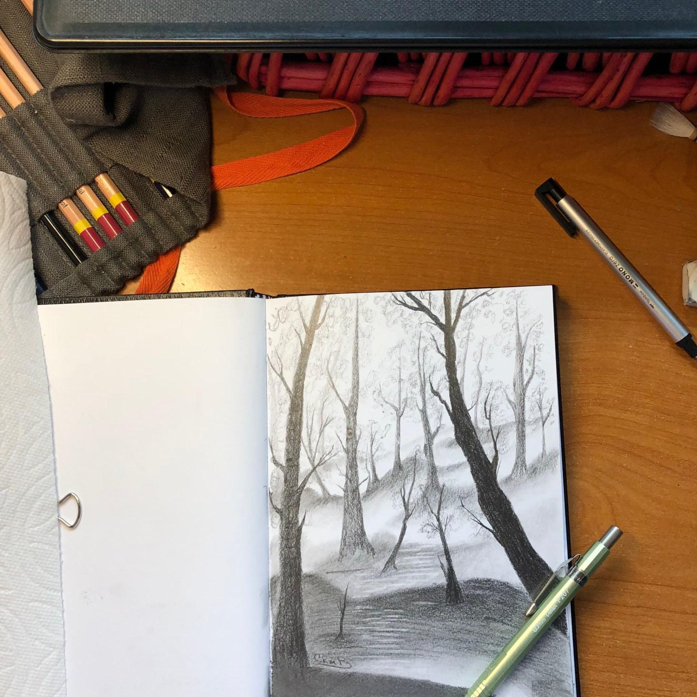 Sketch – Forest