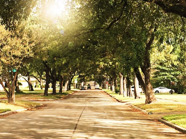 dream neighborhood