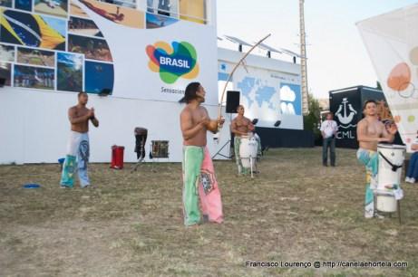 capoeira_rock_in_rio-7133