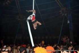 optimus_hype_circo_2