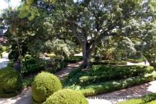 jardim_botanico_ajuda (6)