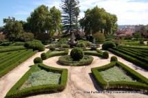 jardim_botanico_ajuda (9)