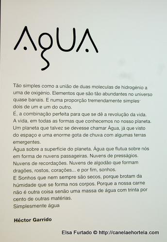 expo_agua4