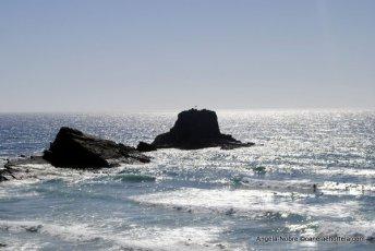 2012_Sudoeste_Inicio (4)