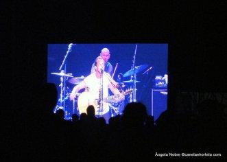 Sudoeste2012_Concertos (13)
