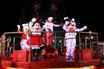 Christmas Tree Lighting Cerimony