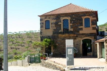 foz_coa_museu_gravuras (10)