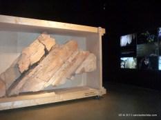 foz_coa_museu_gravuras (4)