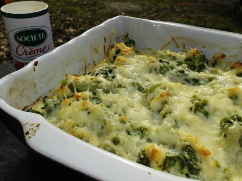 Gratin de brocolis au société crème2