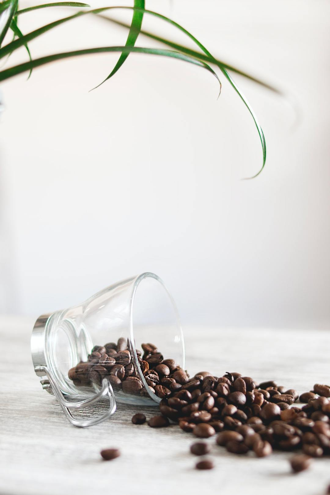 photo-of-spilled-coffee-beans-977878
